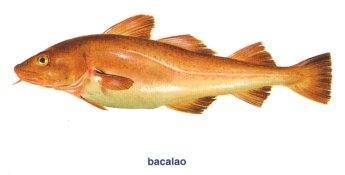 Propiedades del aceite de hígado de bacalao