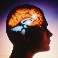 Medicina natural para la epilepsia